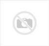 Lixeira Redonda Com Suporte e Pedal de Ferro - 60L - Cor: Vermelho